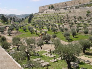 Valley of Jehoshophat